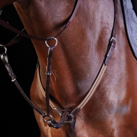 Combination Elastic Event Breastplate