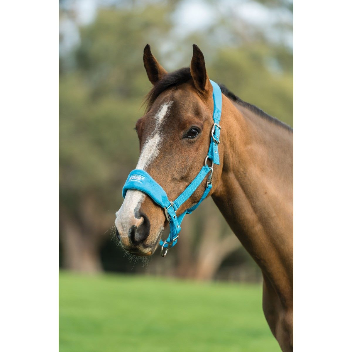 Fleece Shaped Headcollar