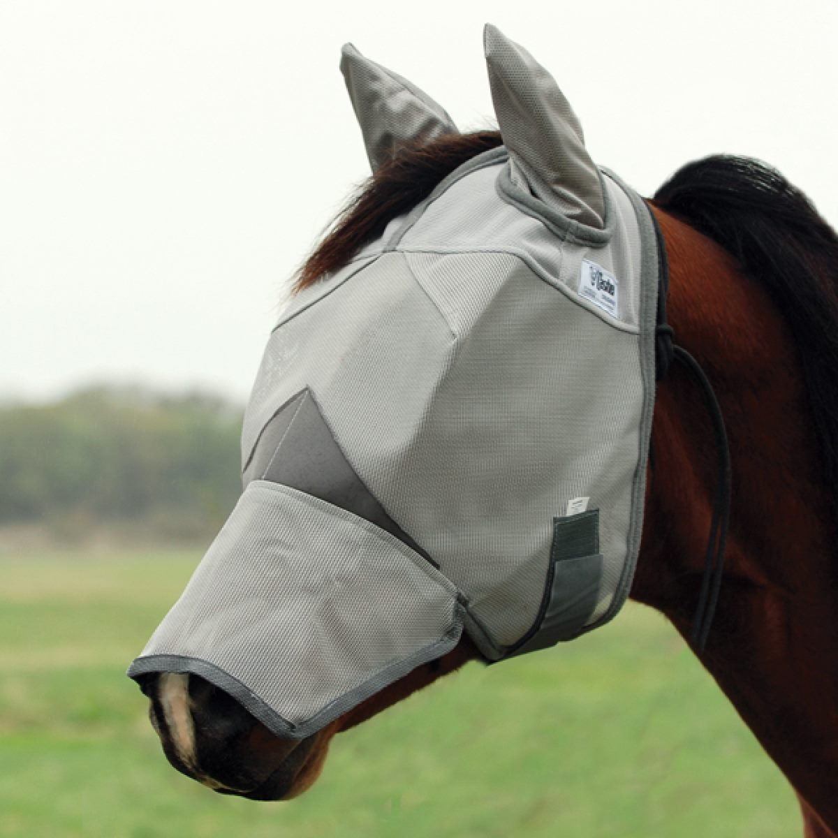 Cool Fly Mask Long Nose With Ears