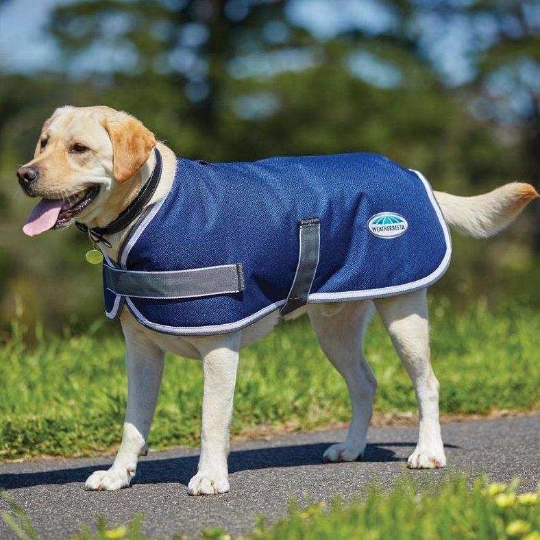comfitec parka 1200D dog coat