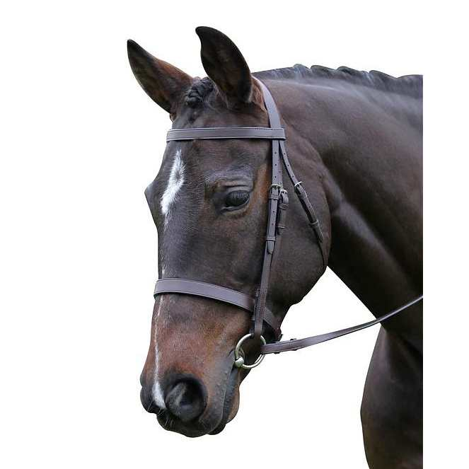 flat cavesson snaffle bridle