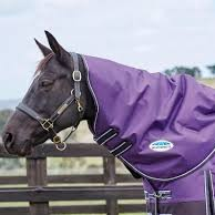 ComFiTec Plus Dynamic Neck Rug