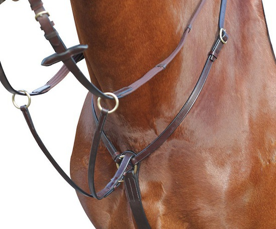 Event/Stock Breastplate/Martingale
