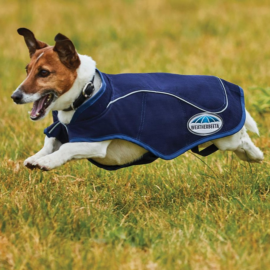 1200d-exercise-dog-coat-navy