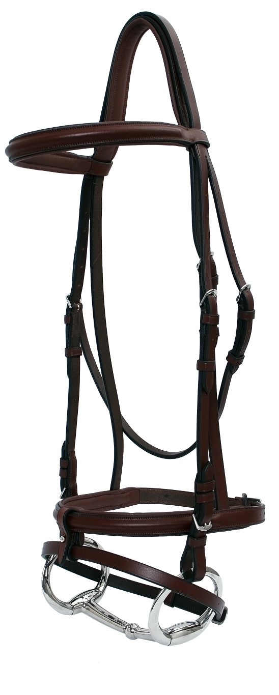raised padded bridle head
