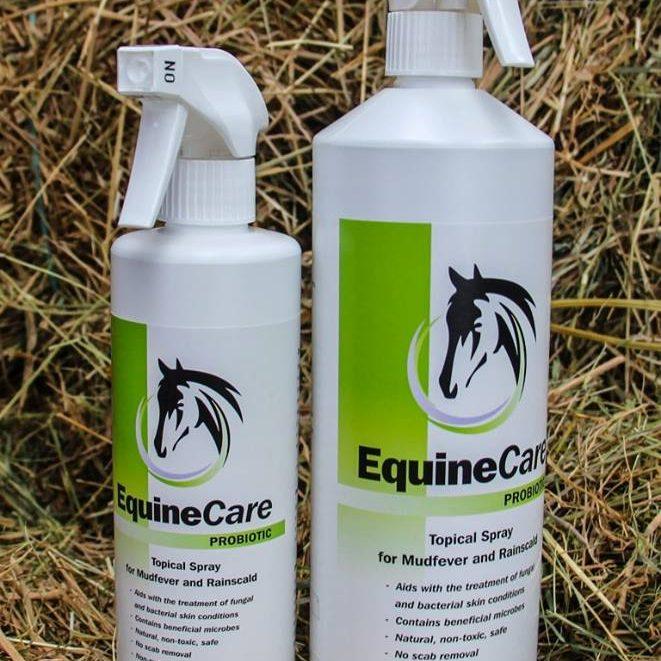 Equine Care Probiotic