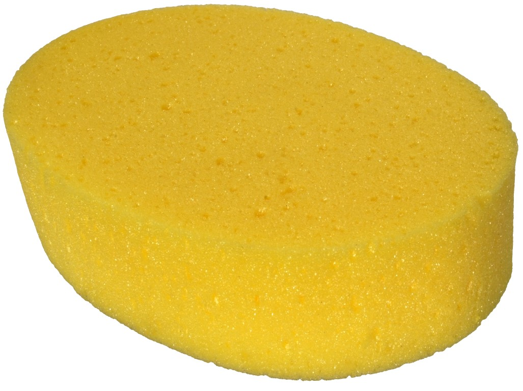 Oval Sponge