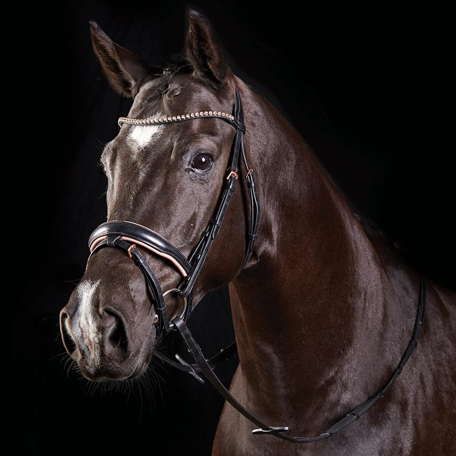 rose-gold-crystal-flash-bridle