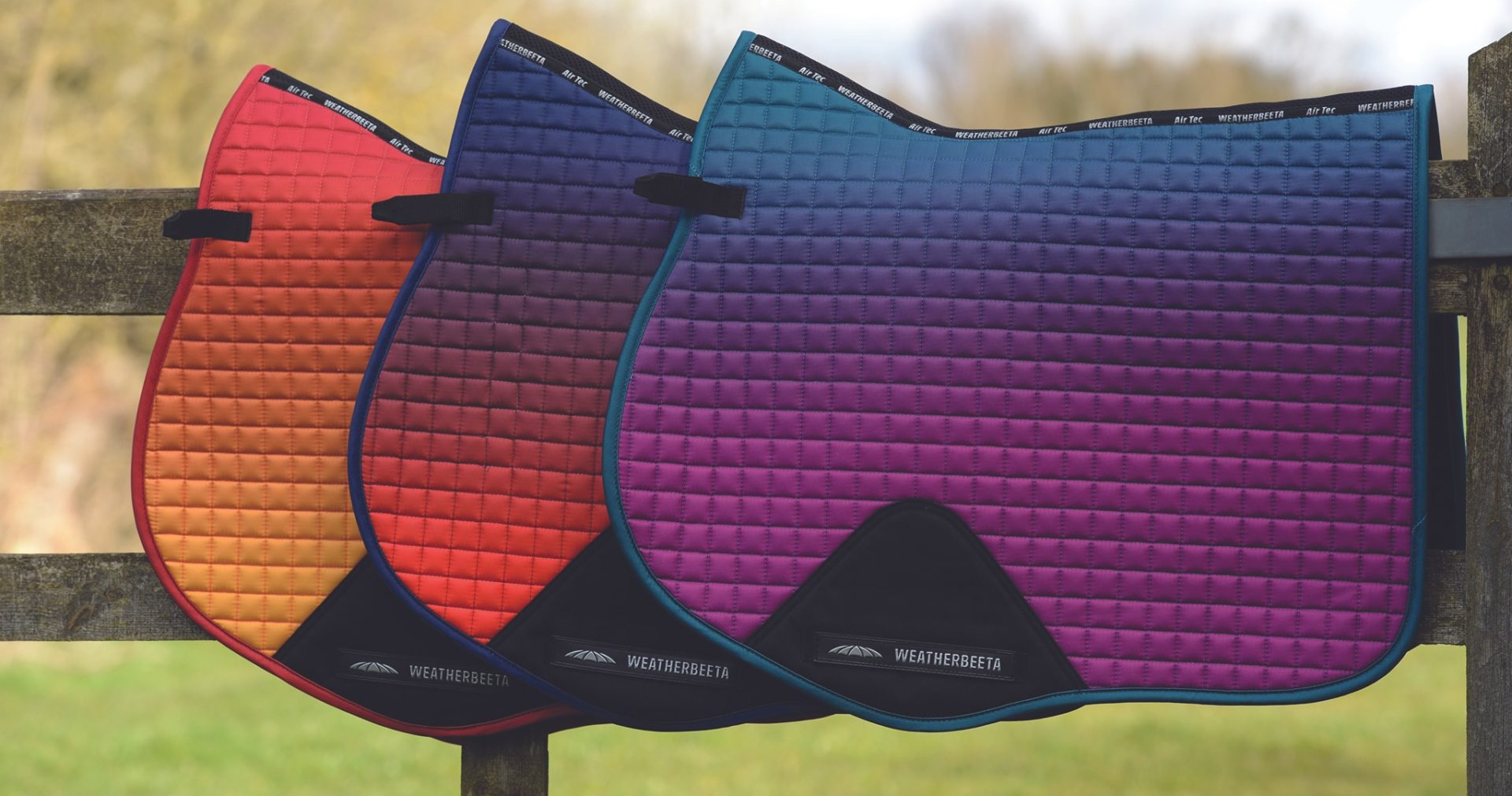 WB Ombre pads